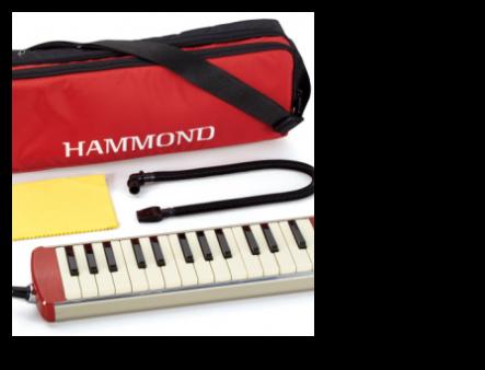 New Hammond SS