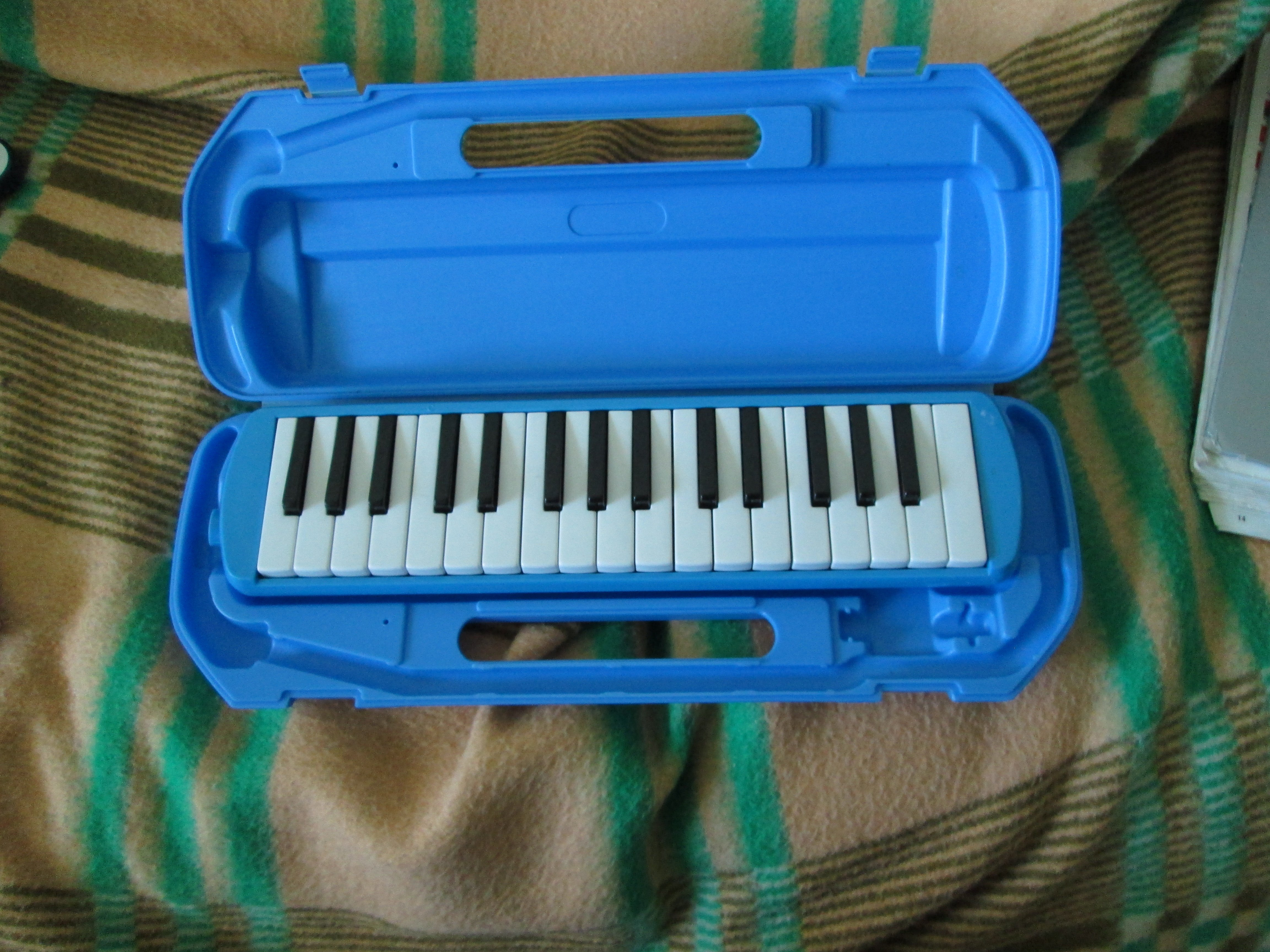 old melodica