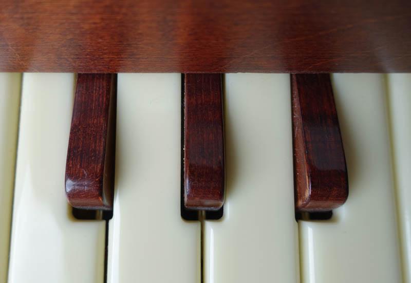 vibrandoneon key
