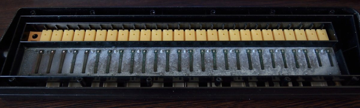 rusty reeds hohner piano 26