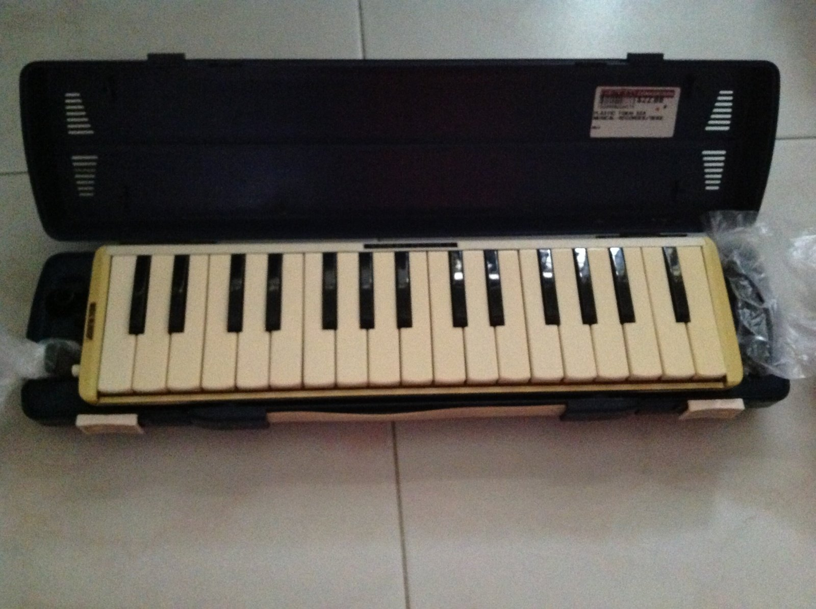 Tokai pianica in blue case