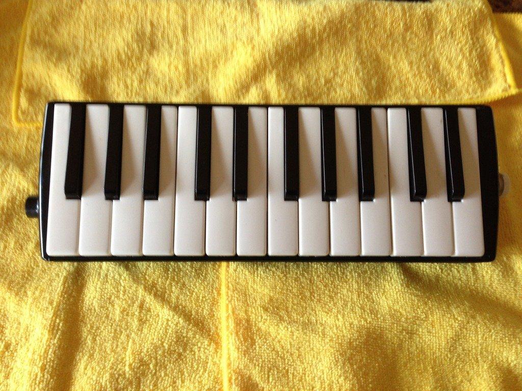 Hohner Basso Melodica