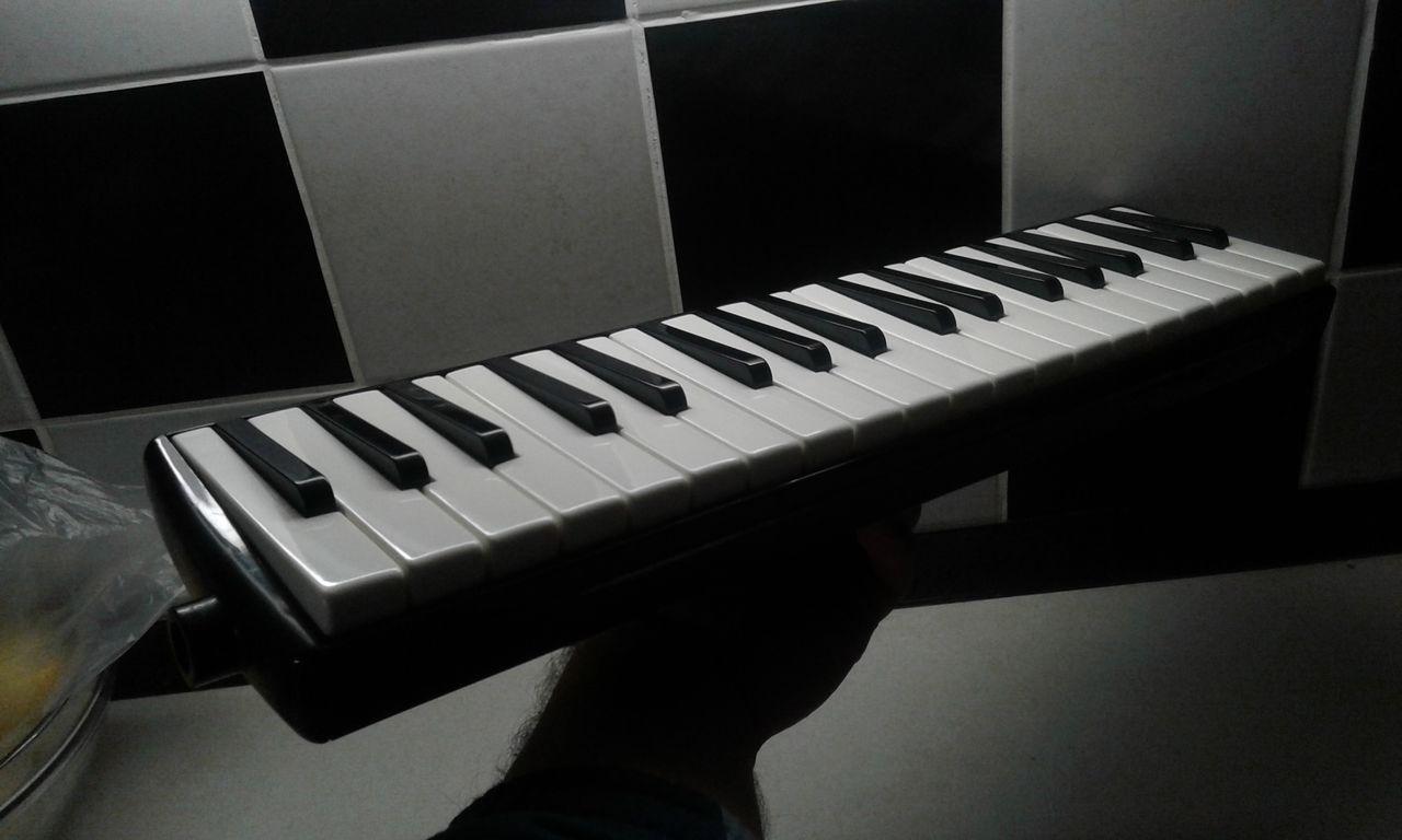 new melodica