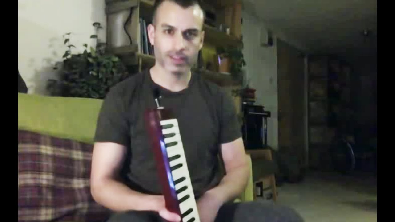Photo of Irish melodica – circular breathing